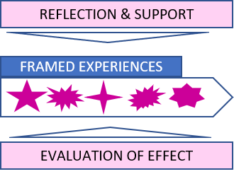 how organisations frame experience